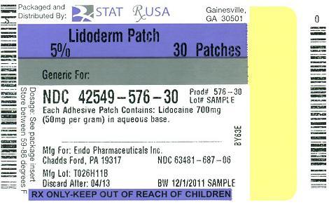LIDODERM (STAT Rx USA LLC): FDA Package Insert, Page 2