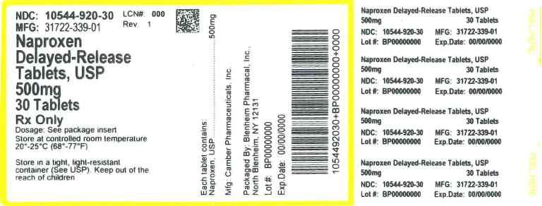 Naproxen Delayed Release (Blenheim Pharmacal, Inc.): FDA Package Insert, Page 3